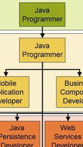 JavaProgrammer