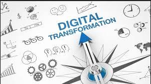 digitalis_transzformacio_30